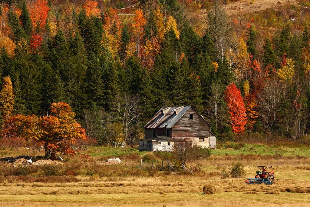 Whooo is God? An Autumn Family Bible Adventure: Fall on the Farm