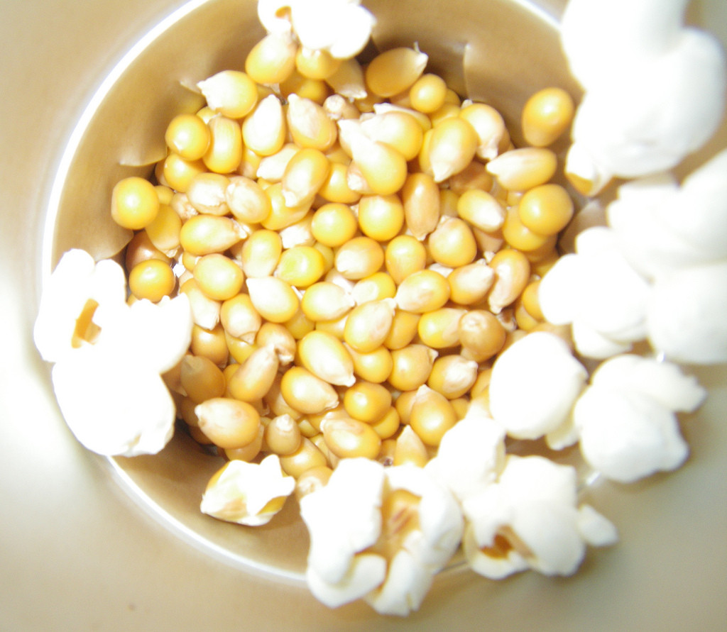 Whooo is God? An Autumn Family Bible Adventure:  Popcorn