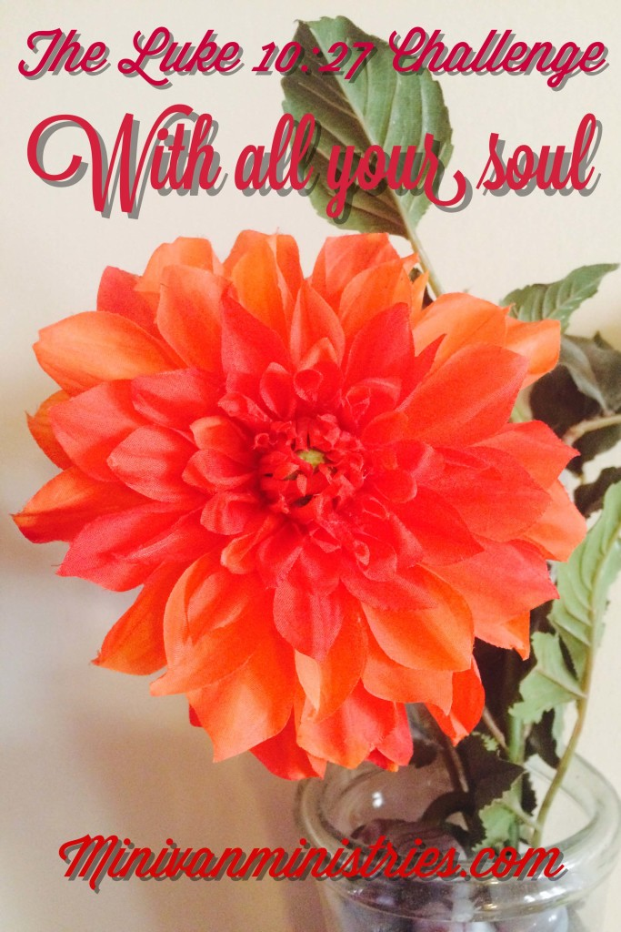 The Luke 10:27 Challenge:  With ALL Your Soul, Day 1