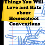 love and hate homeschool conventions