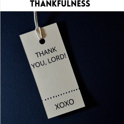 365+ Days of Thankfulness